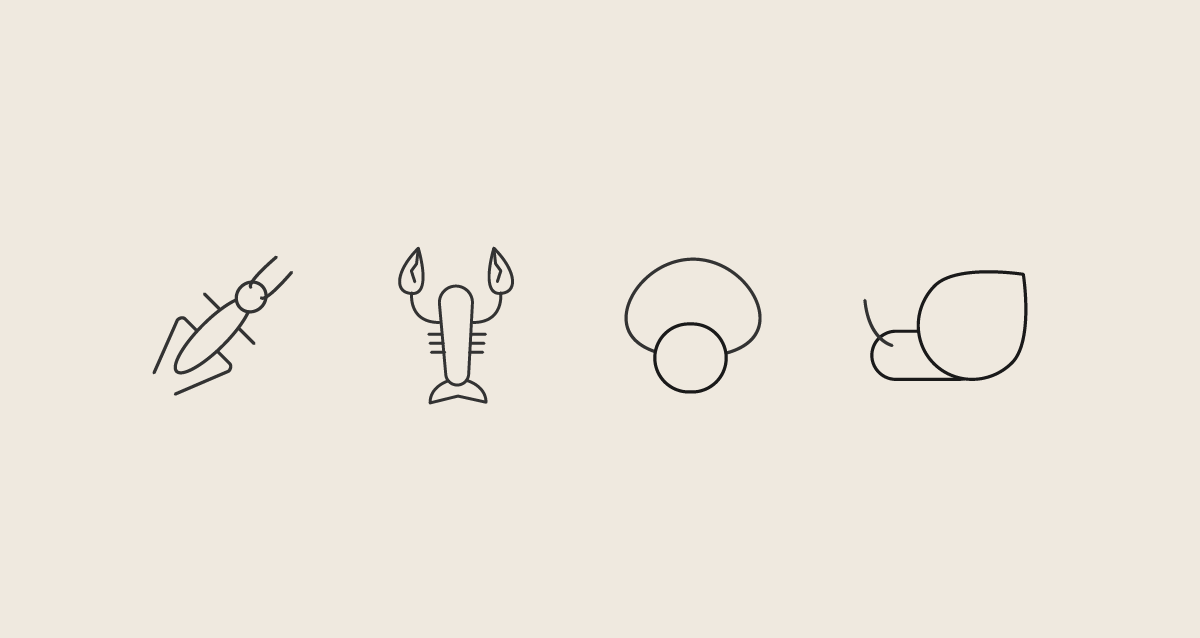cricket, shrimp, mushroom and snail