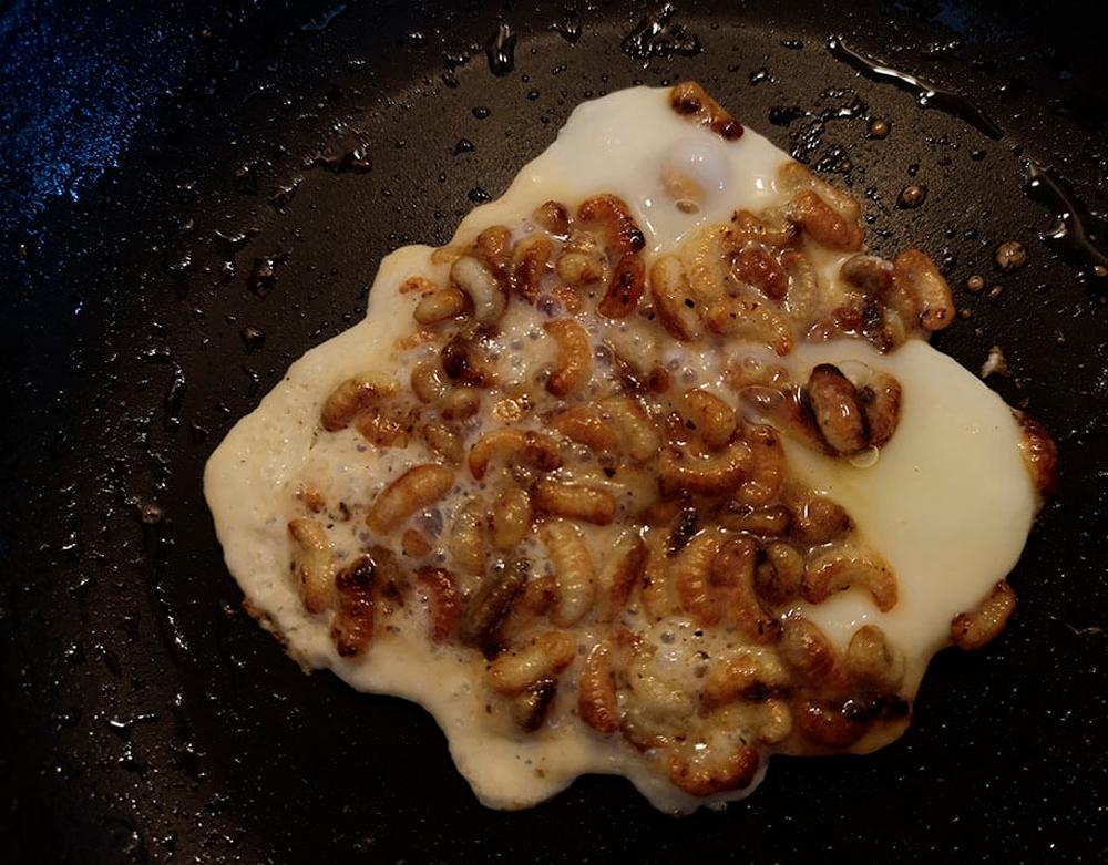 roasting bee larvae with egg white