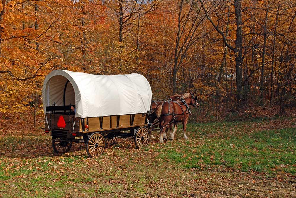 Weaver Draft Horse Wagons