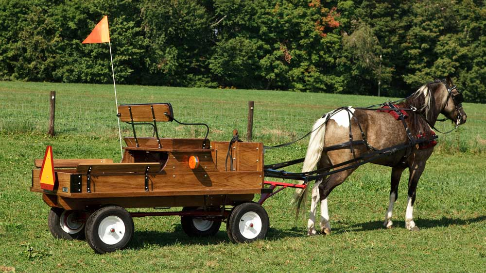 Pony Utility Wagon Bed on 1/2-Ton Pioneer Gear with Air Tires Optional Safety Flag