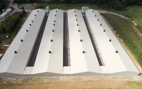 Climatec Systems - Poultry Farm Image