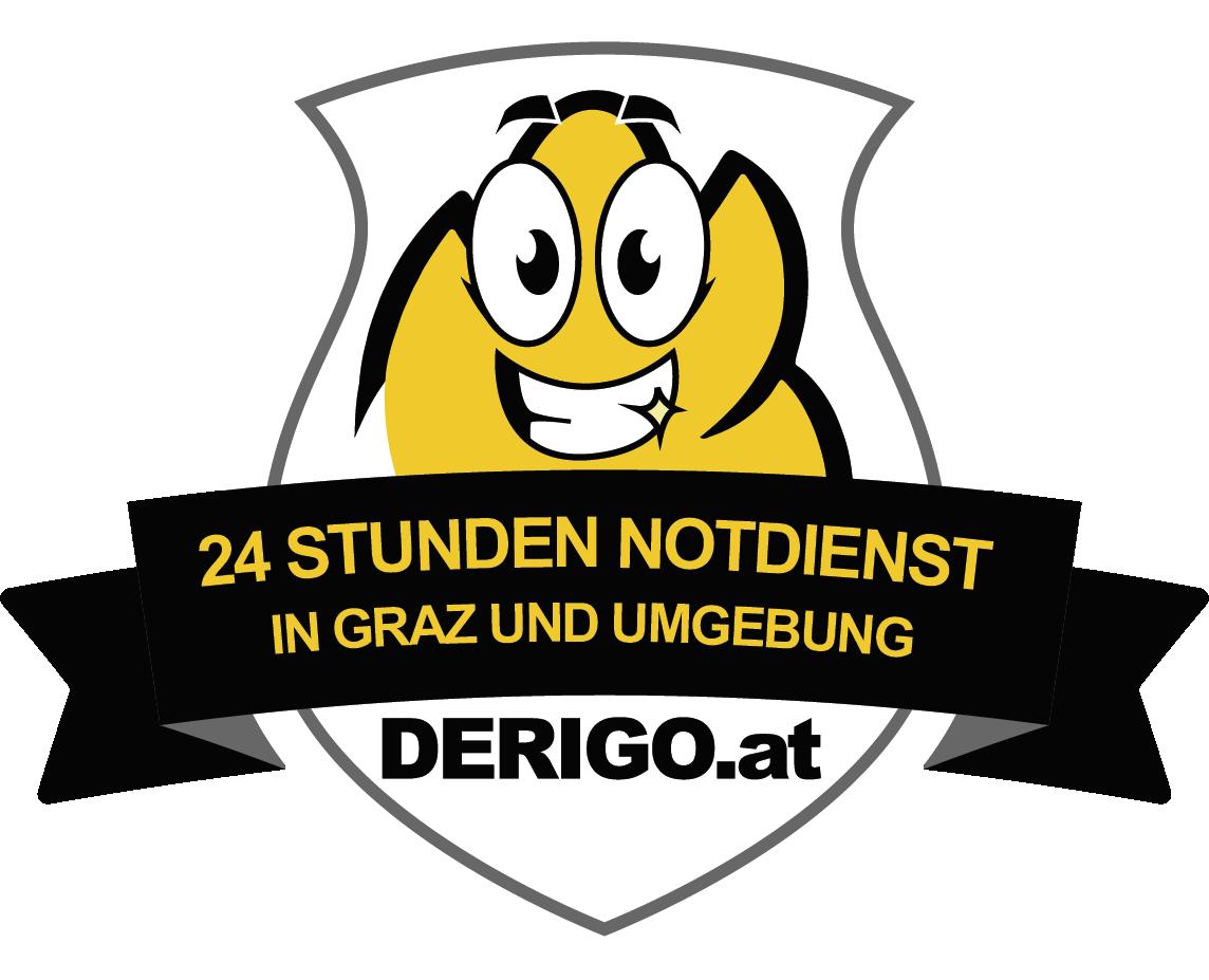 Installateur Notdienst Graz