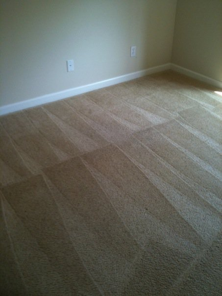 carpet cleaning project by northwest