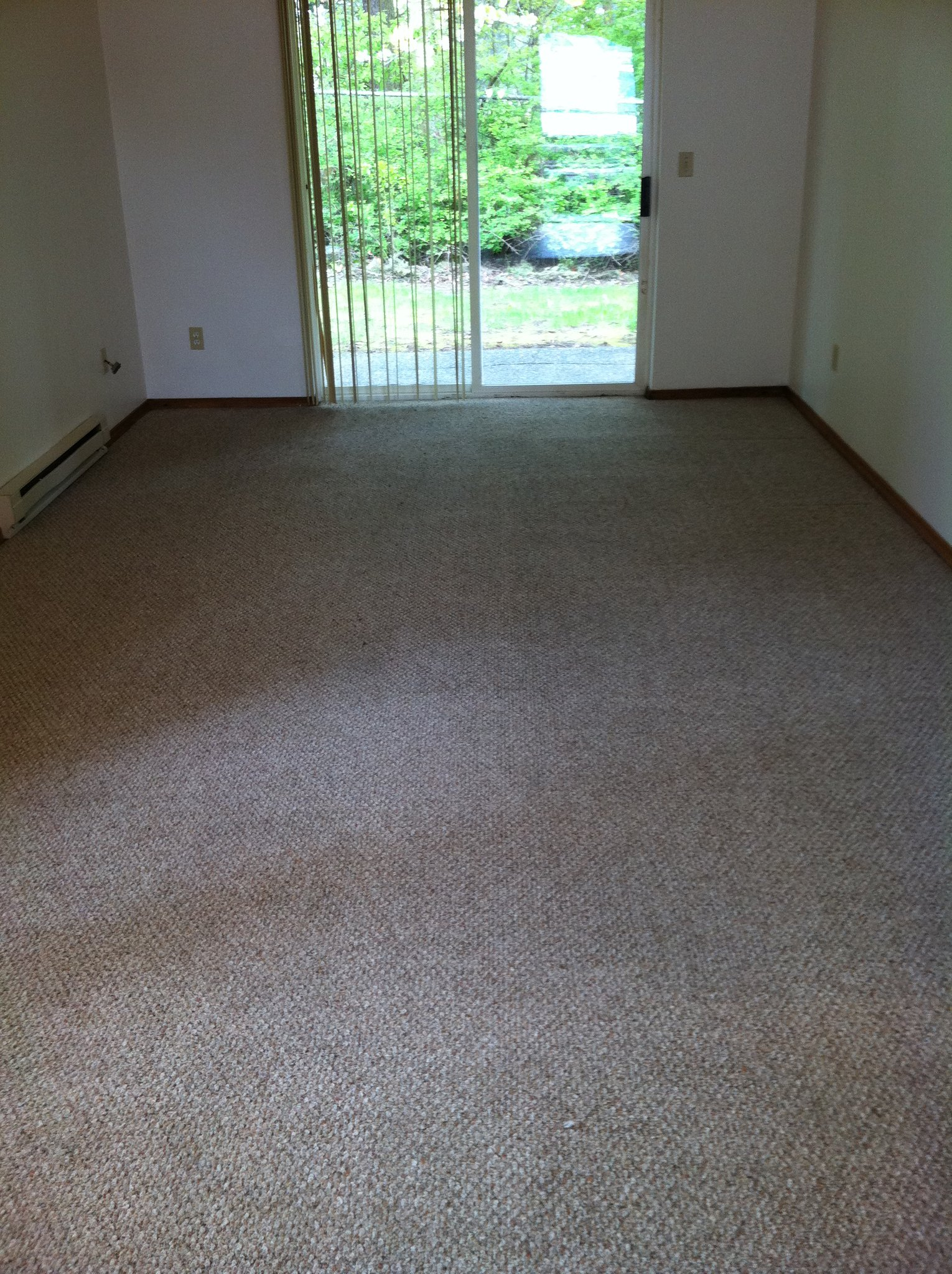 carpet cleaning project 3