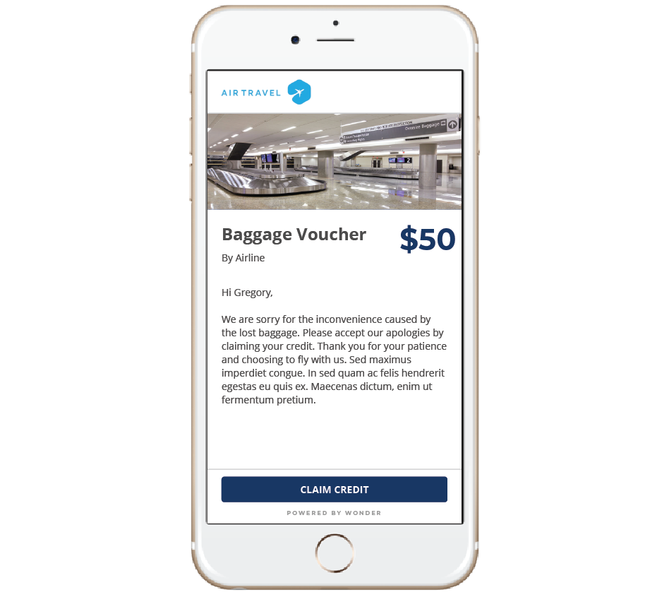 Airline Digital Voucher for Lost Baggage