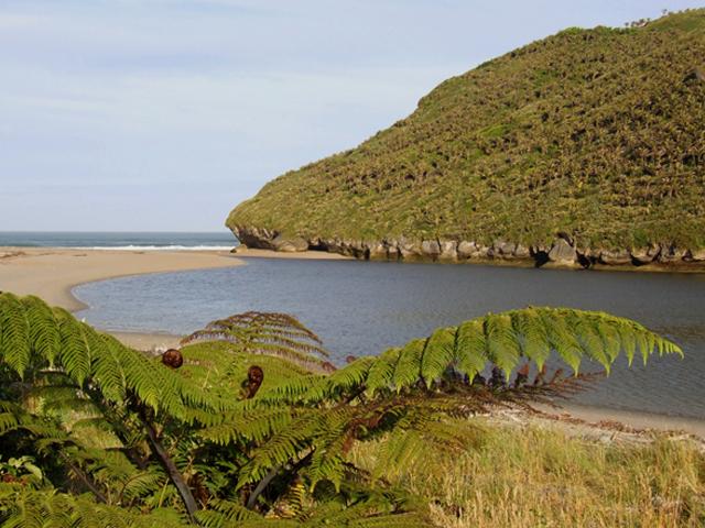 Karamea Heaphy Track in Kahurangi National Park of New Zealand