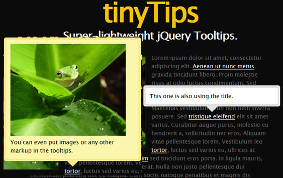 TinTips lightweight jquery plugin