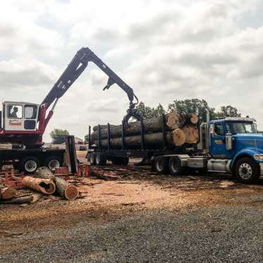 Mohawk Lumber - Timber Buyer in Applecreek Ohio