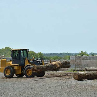 Mohawk Lumber - Buyers of Standing Timber in Applecreek Ohio
