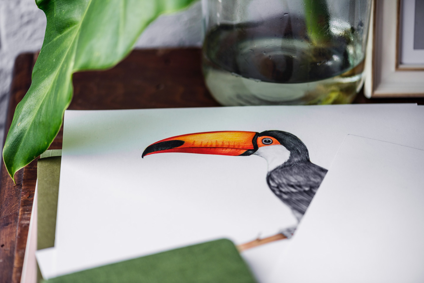 drawing of toucan
