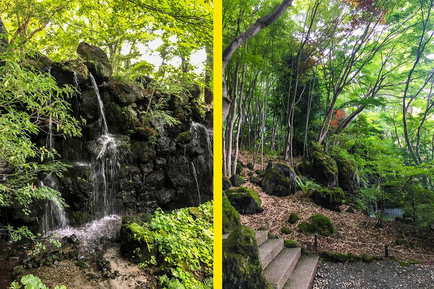 Waterfall and lush green forest on the grounds of  Itchiku Kubota kimono Museum