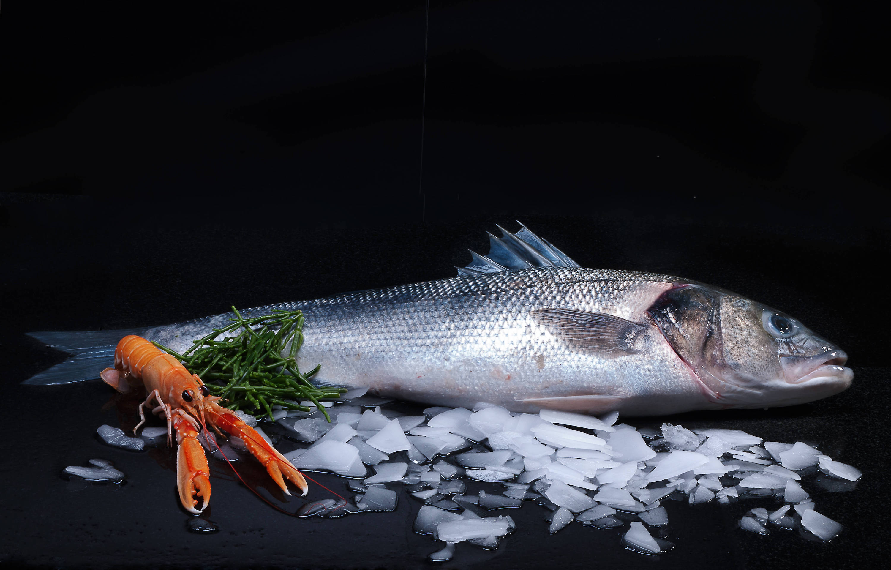 Food Photography client RAO Fish
