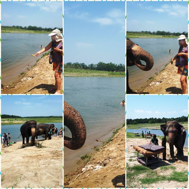 Batons for the Beasts? A Nepalese Safari in Chitwan National