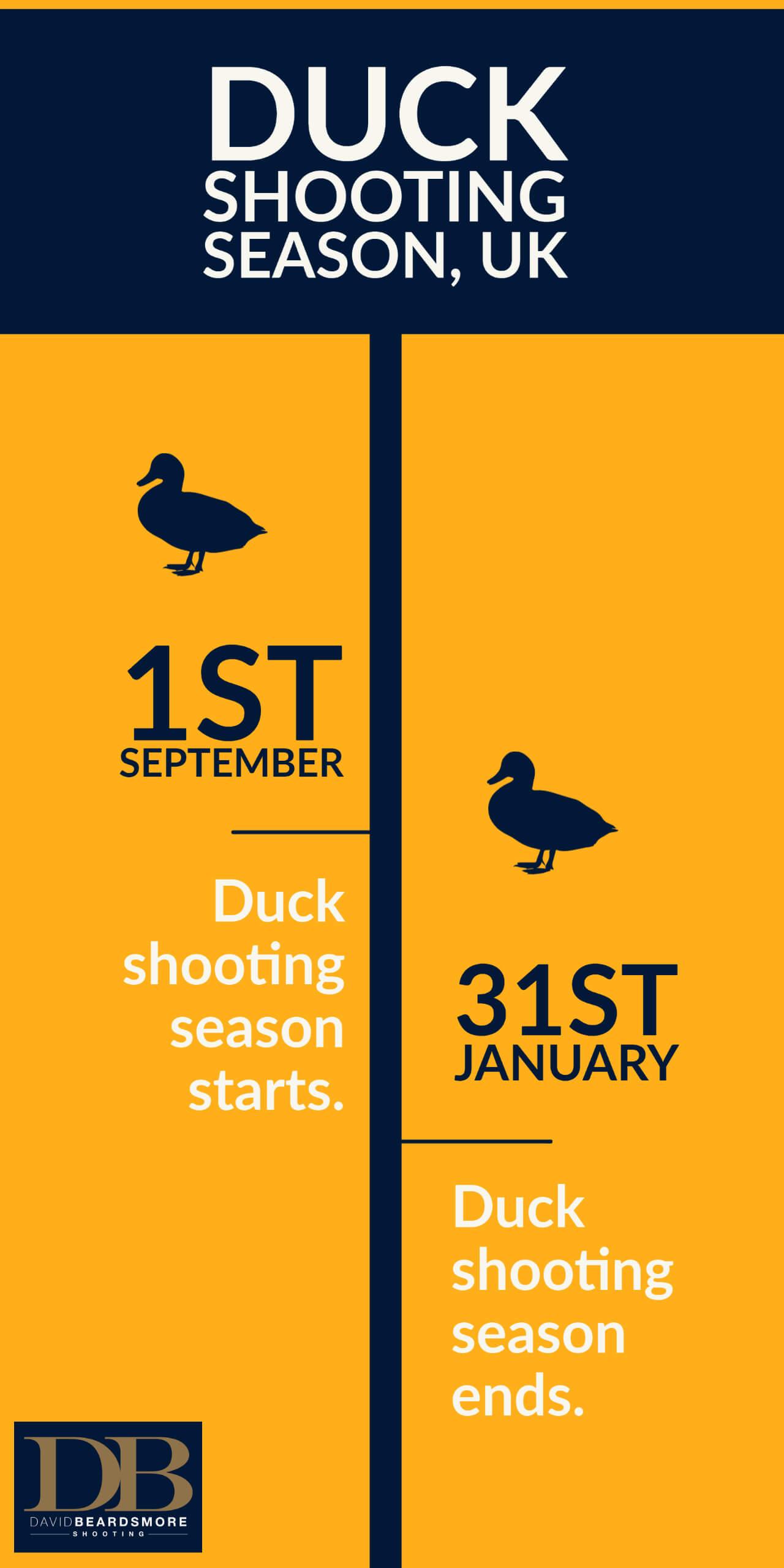 Duck shooting season uk start and ends