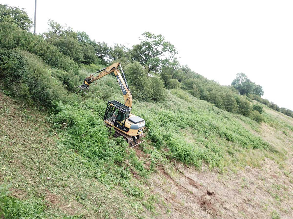 Steep Embankment Scrub Clearance