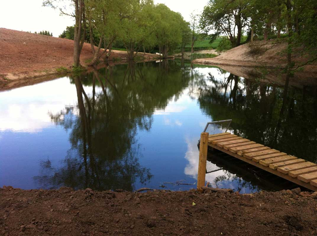 Pond, lake and wetland construction