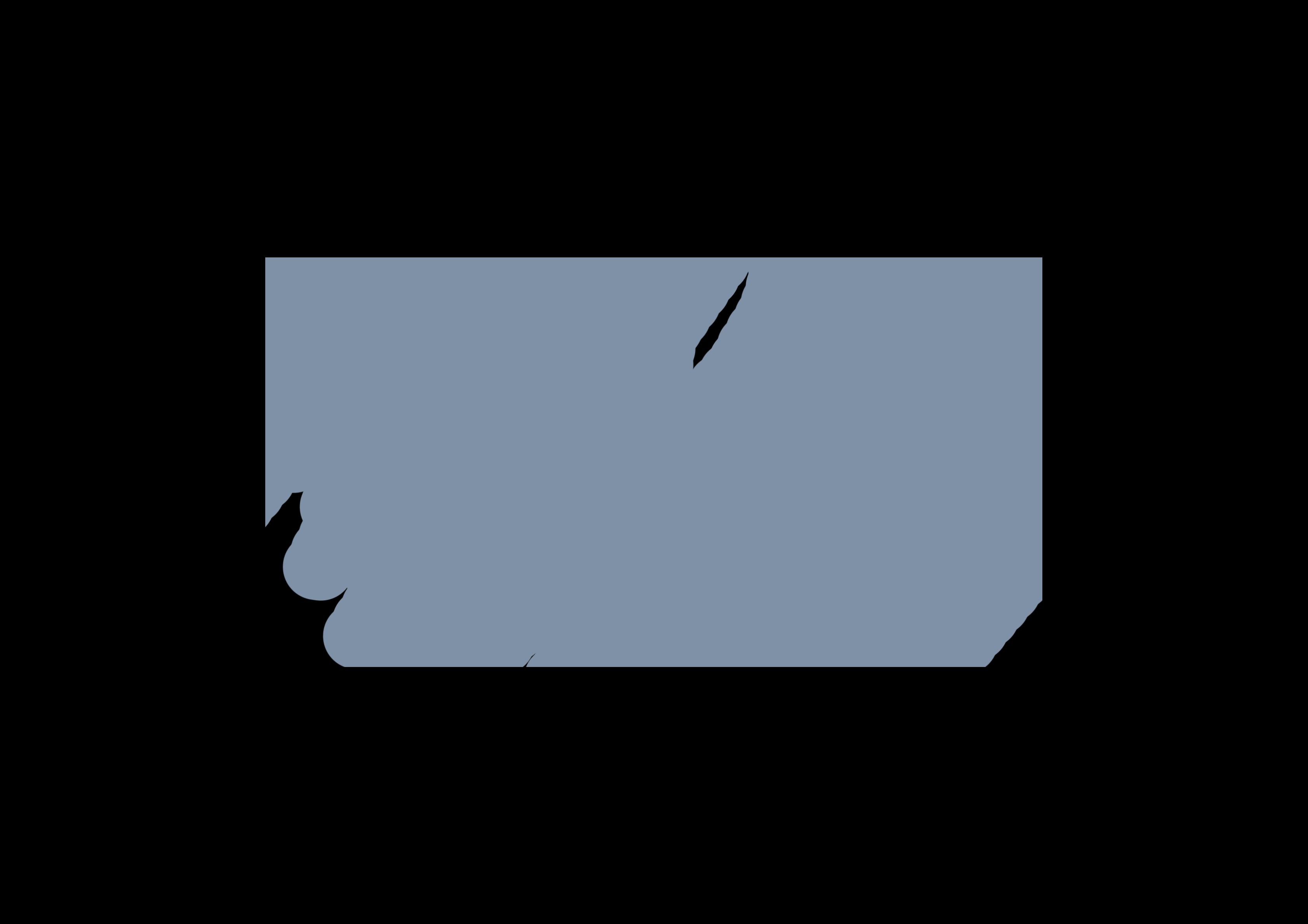 BRYKER HYDE