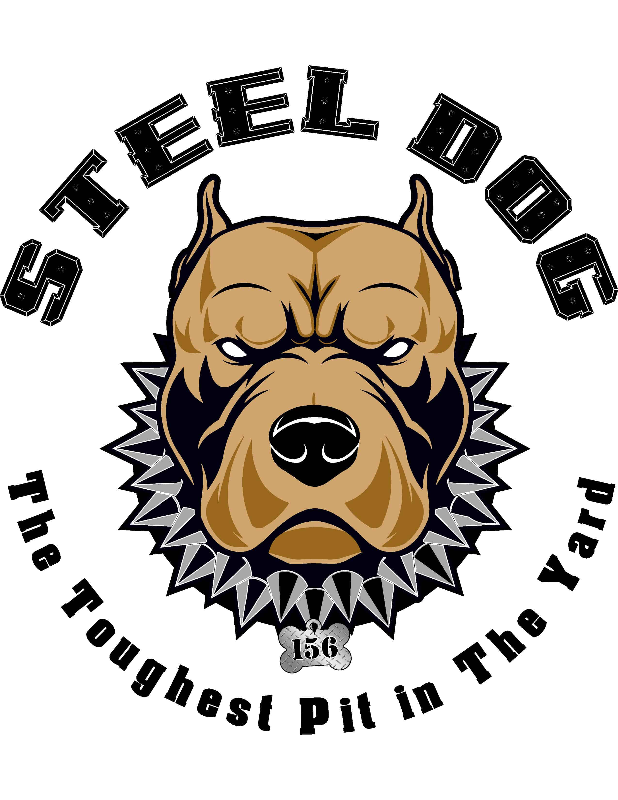 Steel Dog Photo digital marketing client