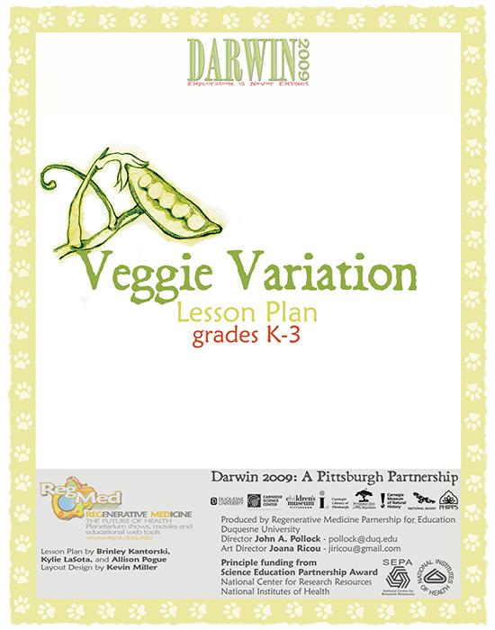 Veggie Variation Lesson Plan