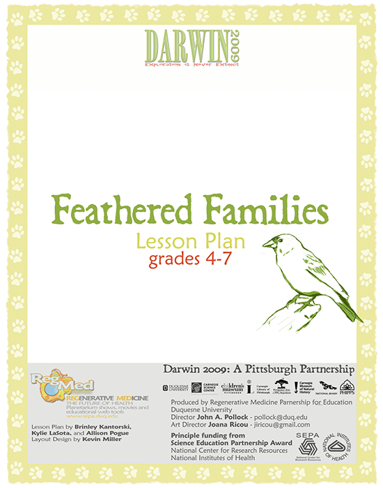 Feathered Families Lesson Plan