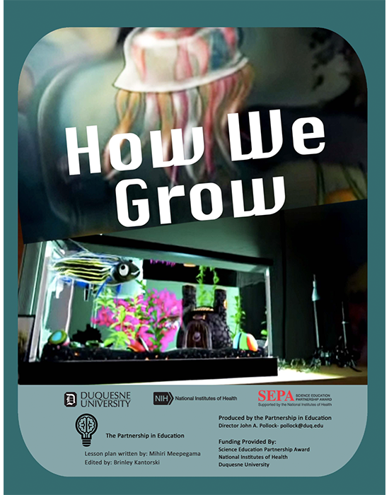 How We Grow Lesson Plan