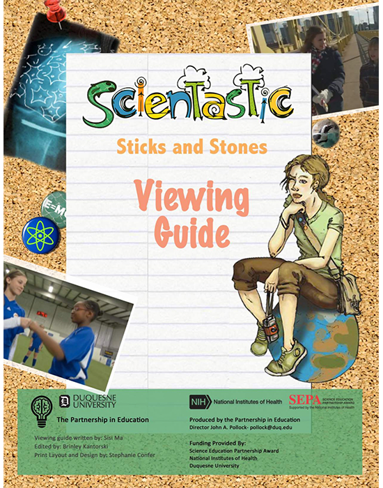 Scientastic Sticks and Stones Viewing Guide