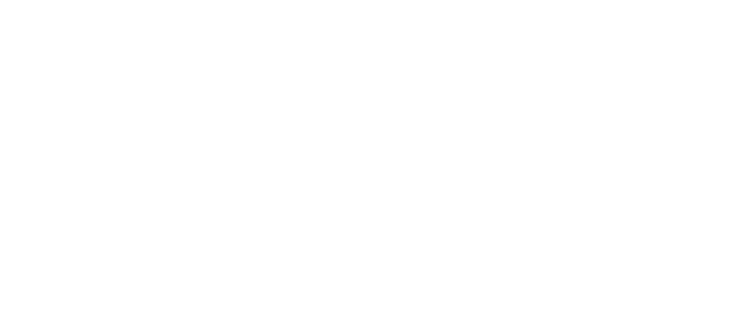 nav-ex cleaning services