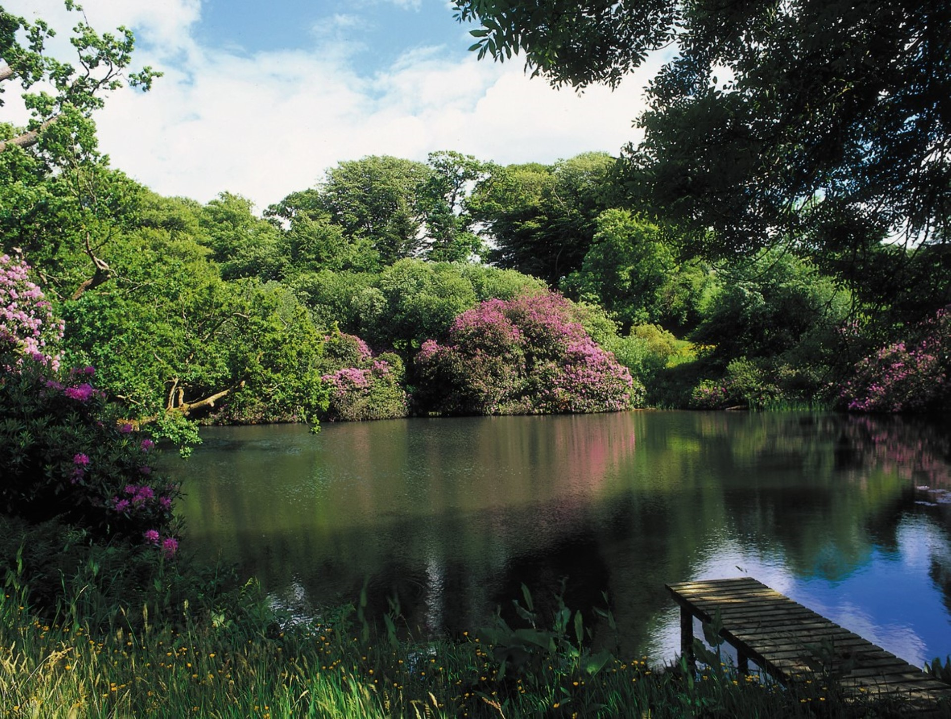 Shirwell Park Manor