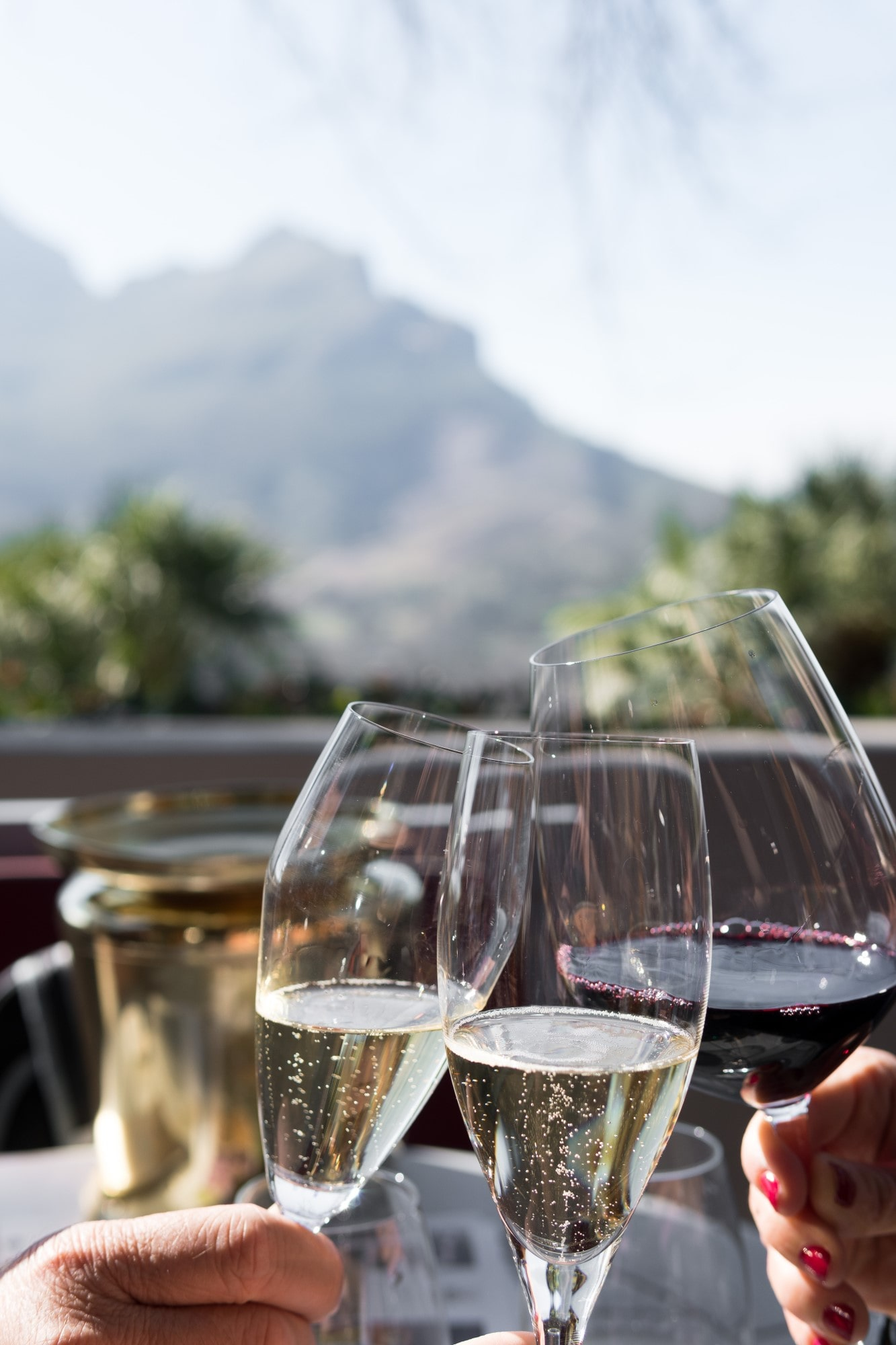 Three glasses of wine and bubbly coming together with a mountain backdrop