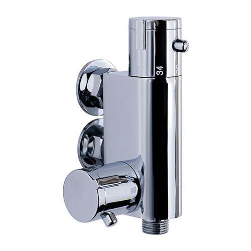 Vertical Thermostatic Shower Control