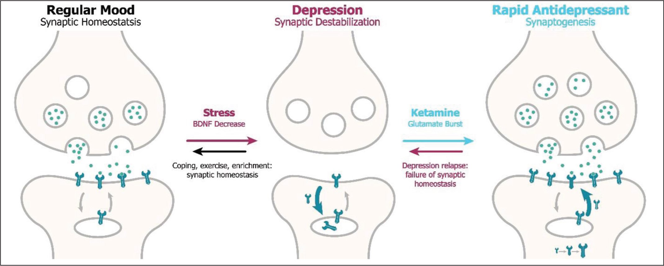 how ketamine works on the synapses for depression