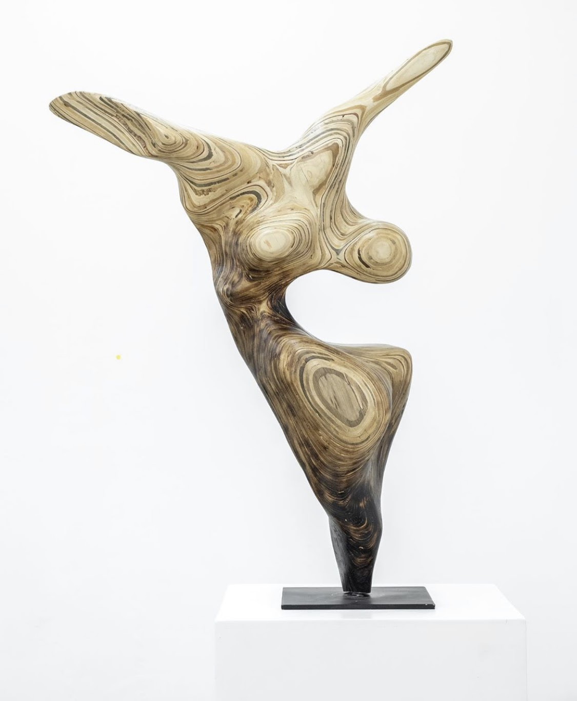 Sculpture made from wood that has two appendages out from it that look like arms and its form encapsulates the artists' intention and namesake--freedom.