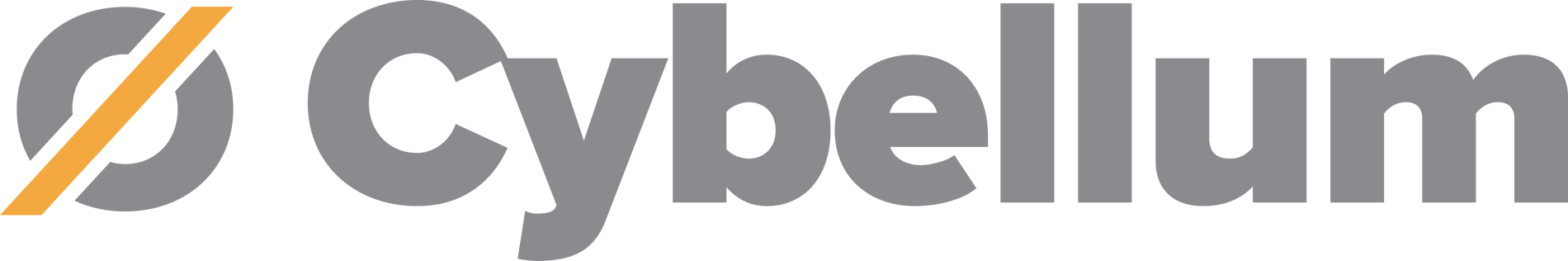 Cybellum logo