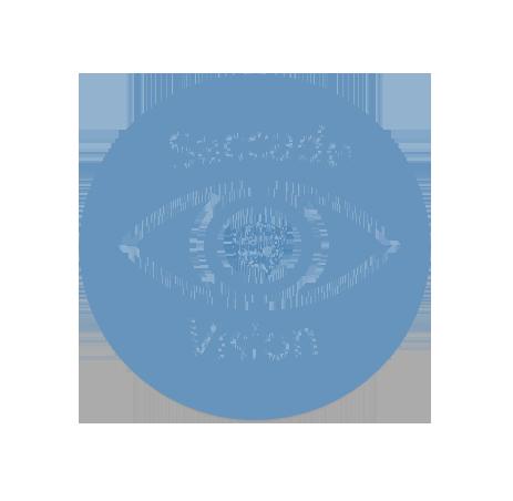 Saccade Vision logo