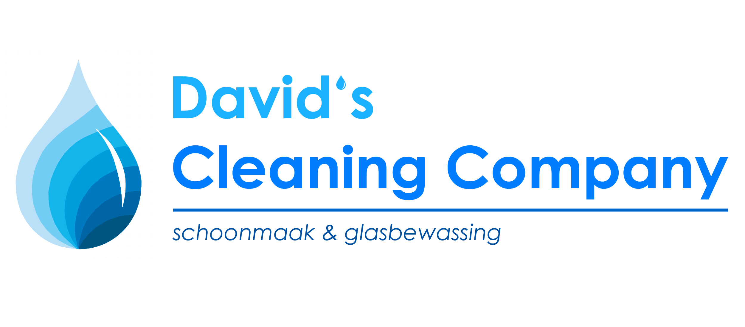 David's cleaning company