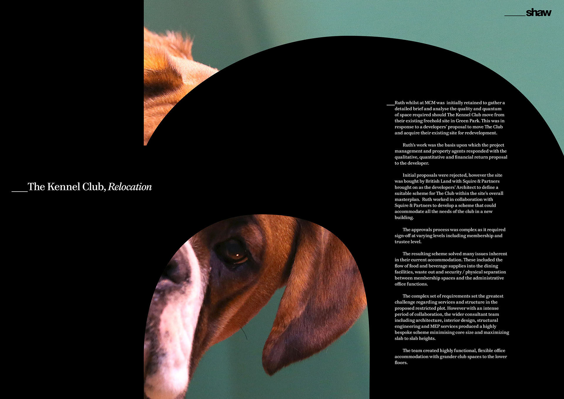 Profile, Kennel Club case study spread.