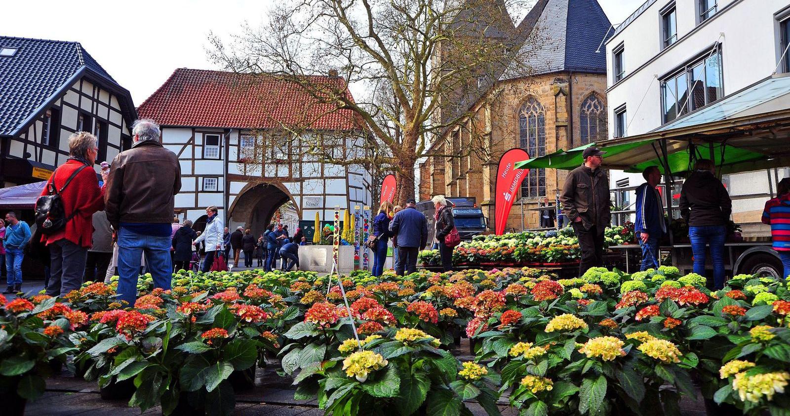 Lengericher Blumenmarkt – einer der vielen Fachmärkte die Lengerich zu bieten hat.