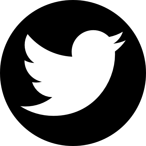 Twitter 256 Image