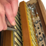 Tuning a Manfrini Accordion.