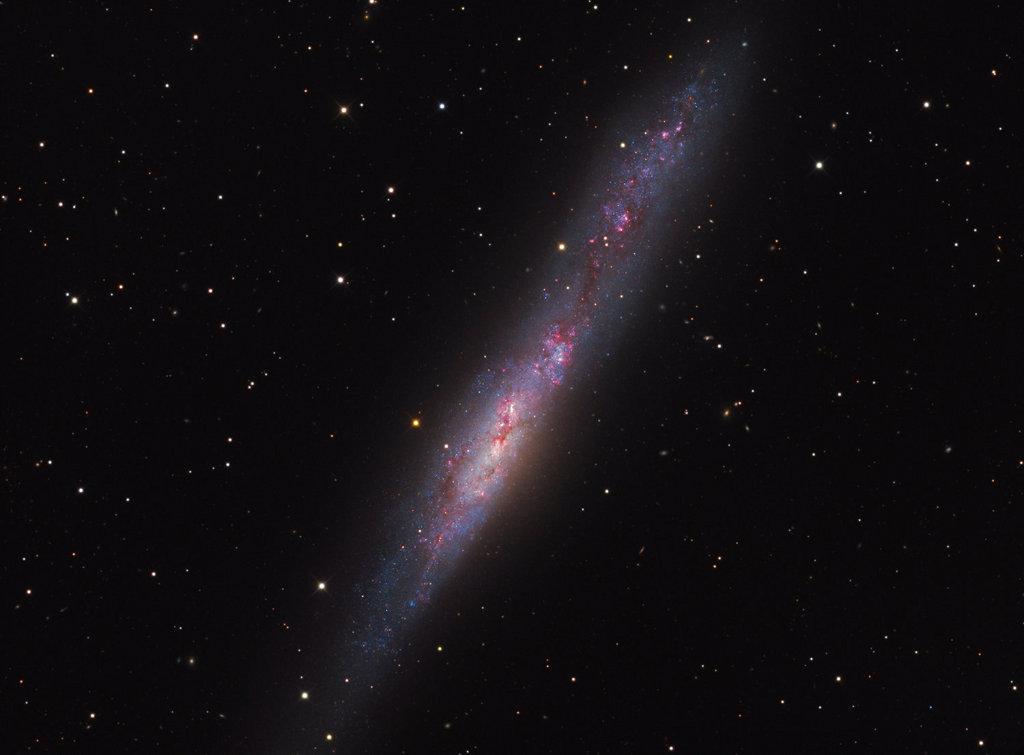 La galaxie irrégulière NGC 55