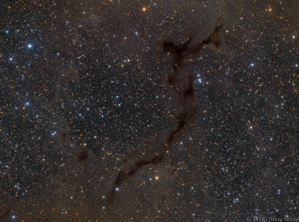 Barnard 150 : Un hippocampe dans la constellation de Céphée