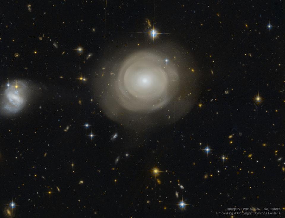 Coquillages stellaires dans le galaxie elliptique PGC 42871