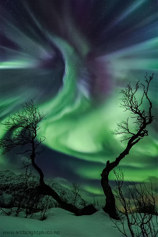 Une aurore semblable à une créature au-dessus de la Norvège