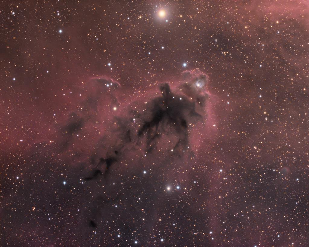 LDN 1622 : Nébuleuse sombre dans la constellation d'Orion