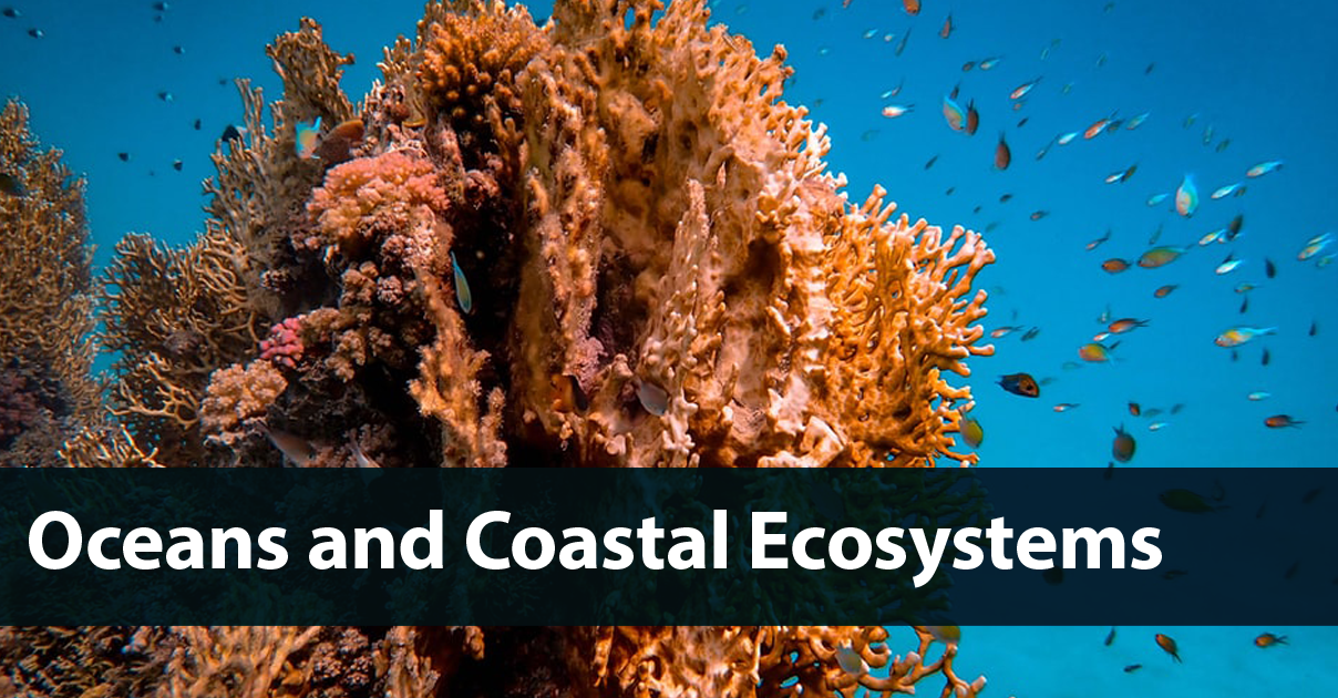 Oceans and Coastal Ecosystems