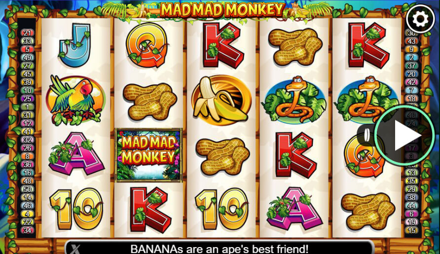 mad mad monkey slot review