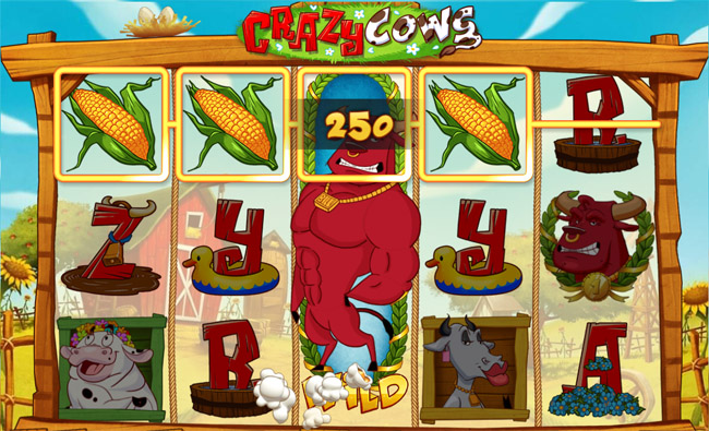 Crazy Cows slot Play'n GO