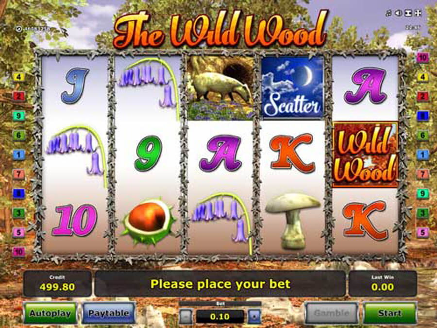 The Wild Wood slot review
