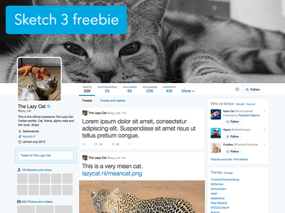 Twitter profile Sketch 3 template Sketch UI Kit