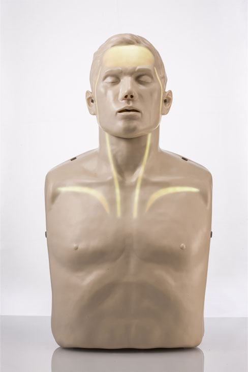 Brayden PRO Manikin with White Illumination Lights